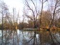 Řeka Orlice ve městě Týniště nad Orlicí